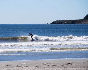 Surfer on Newport Beach-Surfing on Newport Beach (Newport, RI) (medium sized photo)